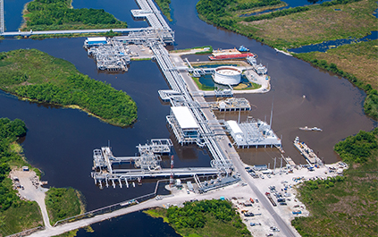 LOOP Terms of Use